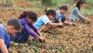 Türkiye'de kayıt dışı 600 bin çocuk işçi var!