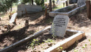İstanbul'da Suriyeliler için mezarlık yapıldı