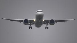 Ünlü havayolu şirketi iflas talep etti