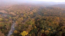 Ormanlarındaki kaçak yapılar yıkılacak!