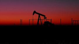 Brent petrolün varili 25 doların altına düştü