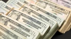 Bankalardaki döviz varlığı yüzde 5.5 arttı!