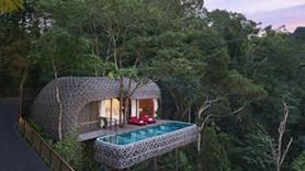 Dünyanın en güzel ağaç otelleri