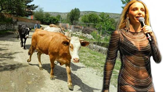 Ünlü popçu Gülşen de köye kaçtı! Hangi köy?