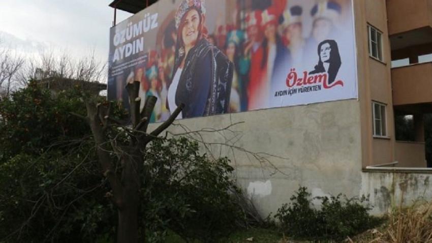 CHP'li adayın afişi için ağaç kesilmesine tepki!