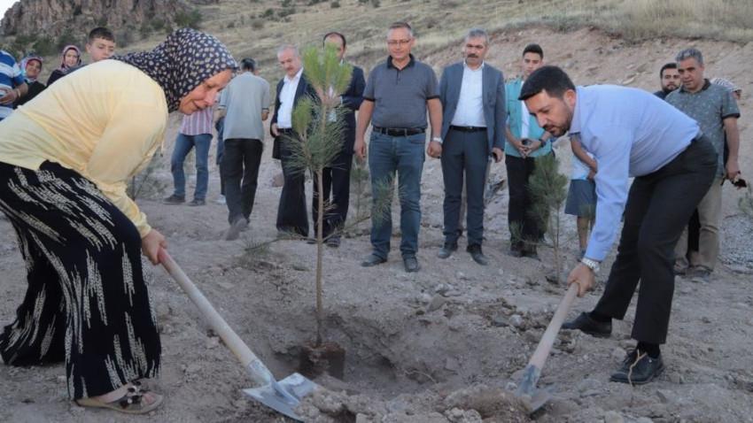 Nevşehir'de her yeni doğan ve ölen kişi için fidan dikilecek