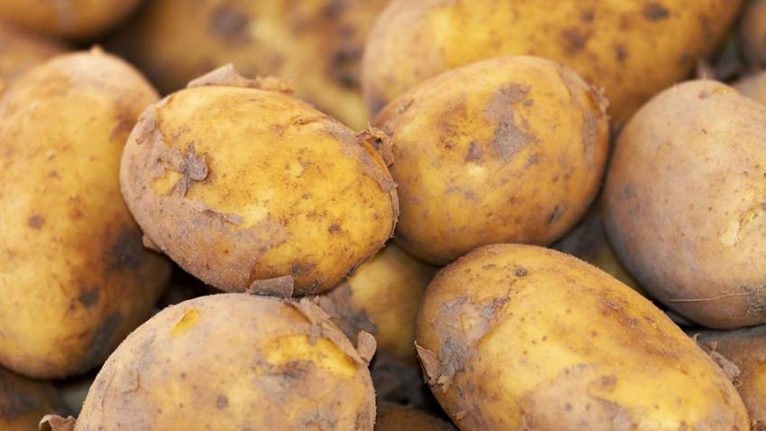 Patates ve kuru soğanın fiyatı uçmasın diye yurt dışına ihracatına kısıtlama