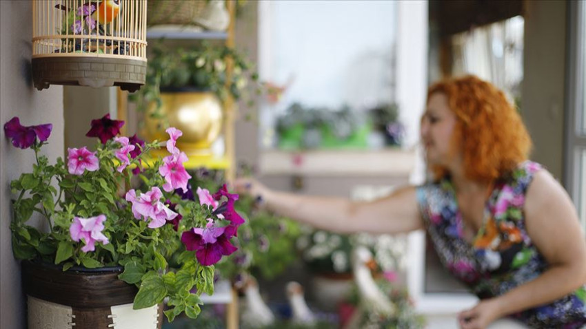 Koronavirüsle evler çiçeklendi