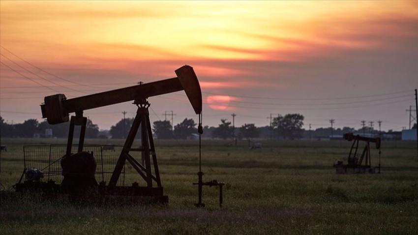 Brent petrolün varili 44,14 dolar