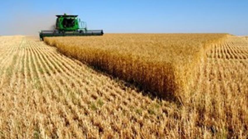 Tarım arazilerimiz yok yere elden çıkıyor